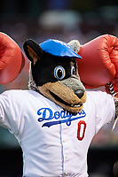 The Oklahoma City Dodgers mascot during a game against the Colorado Springs Sky Sox on June 2, 2017 at Chickasaw Bricktown Ballpark in Oklahoma City, Oklahoma.  Colorado Springs defeated Oklahoma City 1-0 in ten innings.  (Mike Janes/Four Seam Images)