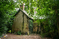 BNPS.co.uk (01202 558833)<br /> Pic: MaxWillcock/BNPS<br /> <br /> Pictured: The back of Grasshopper Cottage.<br /> <br /> An abandoned cottage that is covered by undergrowth and looks like something out of a horror film has sold for a whopping £430,000.<br /> <br /> The derelict property, called Grasshopper Cottage, had a valuation of £275,000 before it went up for sale at auction.<br /> <br /> But due to the current state of the property market where demand far outstrips supply, interest and bidding in the 150-year-old cottage took off.