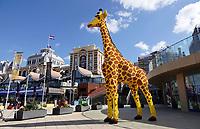 Nederland Den Haag Scheveningen -  maart 2021.  Giraffe van Lego op de Boulevard.   Foto ANP / Hollandse Hoogte /  Berlinda van Dam