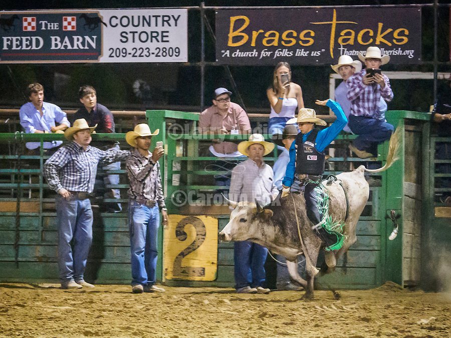 Teen steer busting', Saturday night at the rodeo during the 80th Amador County Fair, Plymouth, Calif.<br /> .<br /> .<br /> .<br /> .<br /> #AmadorCountyFair, #1SmallCountyFair, #PlymouthCalifornia, #TourAmador, #VisitAmador