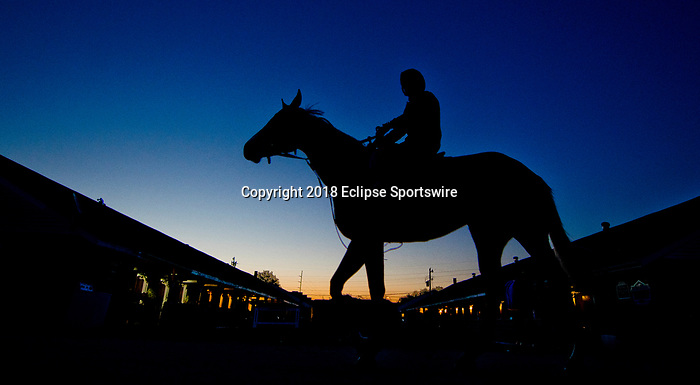 LOUISVILLE, KY - APRIL 29: Horses walk to the track as Kentucky Derby Week gets rolling at Churchill Downs on April 29, 2018 in Louisville, Kentucky. (Photo by Scott Serio/Eclipse Sportswire/Getty Images)