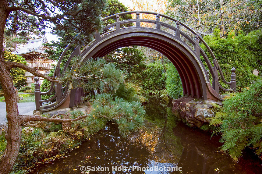 Japanese Tea Garden, Golden Gate Park, San Francisco. Drum Bridge.
