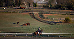 November 2, 2020: Ubettabelieveit, trained by trainer Nigel Tinkler, exercises in preparation for the Breeders' Cup Juvenile Turf Sprint at Keeneland Racetrack in Lexington, Kentucky on November 2, 2020. Alex Evers/Eclipse Sportswire/Breeders Cup