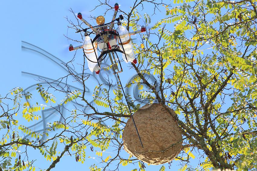 "The drone ""The Joker"" flying towards an Asian hornets' nest.///Le drone « Le joker» en vol vers un nid de frelon asiatique."