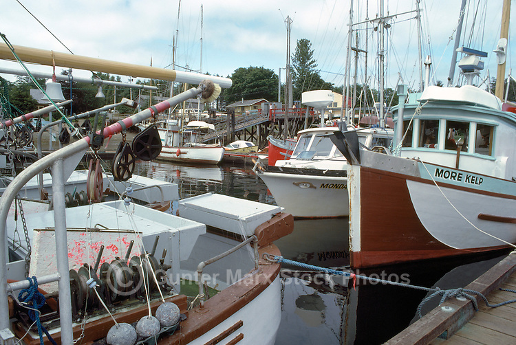Queen Charlotte Islands (Haida Gwaii), Northern BC, British Columbia, Canada - Commercial Fishing Boats docked in Masset Harbour, Graham Island