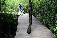 A young boy runs across boardwalks in the Jiuzhaigou National Park. Sichuan Province. China.