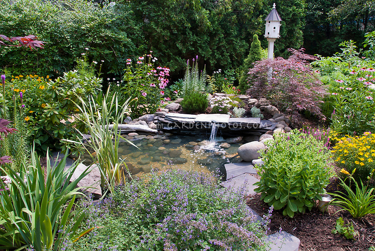 Water feature focal point of garden with birdhouse, little waterfall, perennial plants, Nepeta, Echinacea, Sedum, Liatris, Coreopsis, Hemerocallis, Achillea, foliage and flowers, Japanese maple Acer palmatum var dissectum, evergreens, hedging, mixture of variety of plants