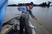 Europe/France/Aquitaine/33/Gironde/Bordeaux : Pêche à l'alose sur la Garonne