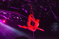 Acrobatic performers during a live show.