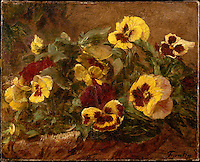 Pansies, 1874  by Henri Fantin-Latour (1836–1904). The Metropolitan Museum of Art, New York.