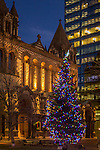 Christmas tree at Trinity Church in Copley Square, Boston, Massachusetts, USA