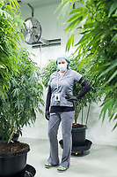 "Brooke Charron is Director of Human Resources at Garden Remedies, a medical cannabis producer, at the Garden Remedies growing and production facility in Fitchburg, Massachusetts, USA, on Fri., Feb. 22, 2019. She is seen here among the ""mother"" plants from which cuttings are taken to make clone plants for growing."