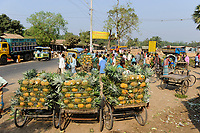BANGLADESH, Region Madhupur, village local market, rickshaw with pineapple