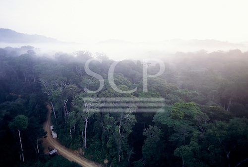 Makande, Gabon. Aerial view of the canopy of the rainforest in early morning mist with a road cutting through the forest.