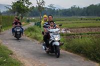 Borobudur, Java, Indonesia.  Two Families on Rural Road.
