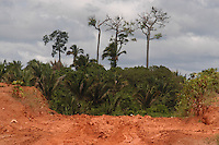 Com o inÌcio de inverno iniciam grandes atoleiros na transamazÙnica, fazendo com que viagens de 140km sejam feitas`em dois dias no percurso Anap˙ Altamira.<br /> Anap˙ Par· Brasil<br /> Foto Paulo Santos/Interfoto<br /> 18/02/2005<br /> <br /> Rodovia BR 230, a Transamazônica.<br /> É a terceira maior rodovia do Brasil, com 4 223 km de comprimento, ligando Cabedelo, na Paraíba à Lábrea, no Amazonas, cortando sete estados brasileiros; Paraíba, Ceará, Piauí, Maranhão, Tocantins, Pará e Amazonas. Nasce na cidade de Cabedelo, na Paraíba, e segue até Lábrea, no Amazonas.<br /> É classificada como rodovia transversal. Em grande parte, principalmente no Pará e no Amazonas, a rodovia não é pavimentada.<br /> Anapú, Pará, Brasil.<br /> Foto Paulo Santos.