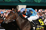 15 October 2011.  Luke of York and jockey Rajiv Maragh win the Keeneland 75th Anniversary Stakes (Listed) $125,000 for owner George Michaels and trainer James Divito.