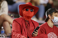 An Arkansas fan looks on, Saturday, November 7, 2020 during a football game at Donald W. Reynolds Razorback Stadium in Fayetteville. Check out nwaonline.com/201108Daily/ for today's photo gallery. <br /> (NWA Democrat-Gazette/Charlie Kaijo)