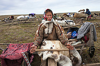 Bovanenkovo ,Yamal Peninsula, Russia, 09/07/2010..A Nenets woman treating deerskin that she will use for repairing her chum, or tent, as the  indigenous nomadic reindeer herders prepare to leave their overnight camp on sledges heading north to the Russian Arctic coast.