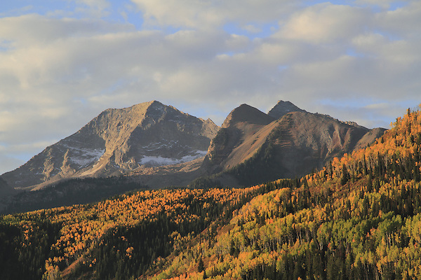 From McCLure Pass, with Capital Peak (14,130 ft) left, Snowmass Mountain (14,099 ft) right, Aspen trees, Carbondale, Colorado. .  John offers private wildflower tours in the Crested Butte area and throughout Colorado. Year-round.