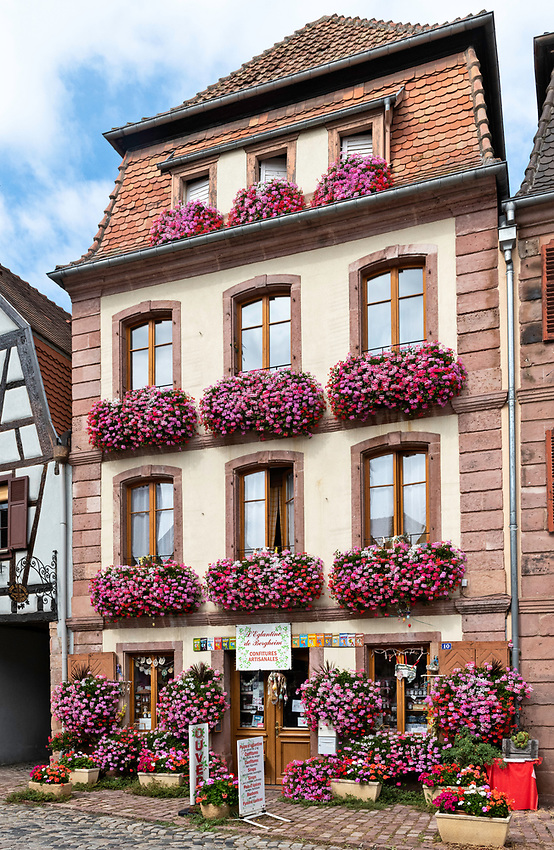 The shop L'Eglantine (Wild Rose) of Bergheim