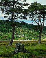 Glenfeshie Lodge is situated amongst the trees on the banks of the River Feshie