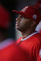 Vernon Wells #44 of the Los Angeles Angels before game against the Cleveland Indians at Angel Stadium in Anaheim,California on April 11, 2011. Photo by Larry Goren/Four Seam Images