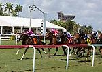 March 27: 202: I Get It (MD) #7, ridden by jockey Jose Ortiz, wins the Sanibel Island Stakes on Florida Derby Day at Gulfstream Park in Hallandale Beach, Florida. Liz Lamont/Eclipse Sportswire/CSM
