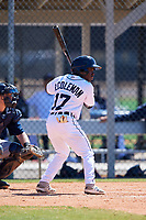Detroit Tigers Ro Coleman (17) during a Minor League Spring Training game against the Atlanta Braves on March 22, 2018 at the TigerTown Complex in Lakeland, Florida.  (Mike Janes/Four Seam Images)
