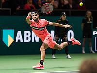 Rotterdam, The Netherlands, 18 Februari, 2018, ABNAMRO World Tennis Tournament, Ahoy, Singles final, Grigor Dimitrov (BUL)<br /> <br /> Photo: www.tennisimages.com