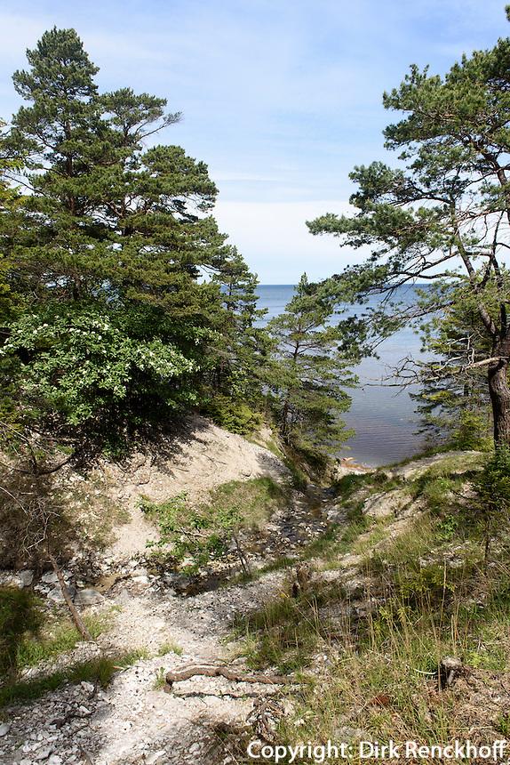 Ostseezufluss bei Rauk Jungfrun bei Lickershamn auf der Insel Gotland, Schweden, Europa<br /> feeder creek into Baltic Sea near Lickershamn, Isle of Gotland, Sweden