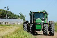 URUGUAY Bella Uniòn , 2100 Hektar Farm der Brueder Karol und Aleco Pinczak, Nachkommen polnischer Einwanderer, Reis Ernte, John Deere Traktor , Erntertrag 10 Tonnen pro Hektar, Reisfelder wurden durch Wasser vom Fluss Uruguay bewaessert / <br /> URUGUAY Bella Union, 2100 hectares farm, paddy harvest, John Deere tractor, yield 10 tons per hectare, rice fields irrigated with water from river Uruguay