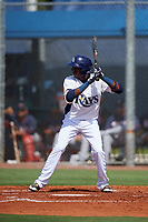 GCL Rays center fielder Yunior Martinez (1) at bat during a game against the GCL Twins on August 9, 2018 at Charlotte Sports Park in Port Charlotte, Florida.  GCL Twins defeated GCL Rays 5-2.  (Mike Janes/Four Seam Images)