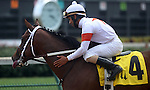 June 28, 2014:  Two year old colt Cinco Charlie (Indian Charlie x Ten Halos, by Marquetry) wins the G3 Bashford Manor Stakes at Churchill Downs with jockey Shaun Bridgmohan.  Trainer Steve Asmussen, owners Corinne and L. William Heiligbrodt. Breeder Candyland Farm.  ©Mary M. Meek/ESW/CSM