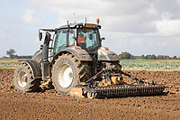 15-10-2021 Power harrowing in the Lincolnshire fens <br />  ©Tim Scrivener Photographer 07850 303986<br />      ....Covering Agriculture In The UK....