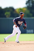 Minnesota Twins Ariel Montesino (30) during an Instructional League game against the Boston Red Sox on September 24, 2016 at CenturyLink Sports Complex in Fort Myers, Florida.  (Mike Janes/Four Seam Images)