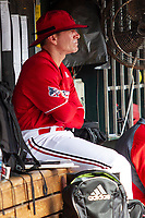 Louisville Cardinals head coach Dan McDonnell (3) in the dugout before Game 7 of the NCAA College World Series against the Auburn Tigers on June 18, 2019 at TD Ameritrade Park in Omaha, Nebraska. Louisville defeated Auburn 5-3. (Andrew Woolley/Four Seam Images)