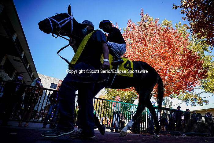 November 6, 2020: Racehorses are walked through the paddock at Keeneland Racetrack in Lexington, Kentucky, on Friday, November 6, 2020. Scott Serio/Eclipse Sportswire/Breeders Cup/CSM