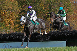 07 November2010:  Expel and Paddy Merrigan (1st), Johann Star and Mark Watts in the Madison Plate at Montpelier Hunt Races in Montpelier Station, Va. Expel is owned by Northfield Farm and trained by Edward Mulligan.  Susan M. Carter/Eclipse Sportswire