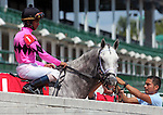 September 06, 2014:  Flashback and jockey Shaun Bridgmohan in the post parade of the G3 Ack Ack Handicap at Churchill Downs.  Trainer Wayne Catalano, owner Gary and Mary West.  He finished third to Bradester. ©Mary M. Meek/ESW/CSM