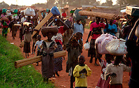 GULU / NORD UGANDA.NIGHT COMMUTERS. UNA COLONNA DI SFOLLATI IN MAGGIORANZA BAMBINI RITORNA AI PROPRI VILLAGGI DOPO AVER TRASCORSO LA NOTTE AL LACOR HOSPITAL DI GULU. UN'INTERA GENERAZIONE CRESCE FUGGENDO DALLE INCURSIONI DELLE BANDE ARMATE DELL'LRA CAPITANATE DA JOSEF KONY..FOTO LIVIO SENIGALLIESI..GULU / NORTH UGANDA.Every night in northern Uganda, tens of thousands of children, known as night commuters, flow into town centres or local hospital..They come seeking safety in shelters set up by aid agencies, with the Ugandan government unable to end a brutal 20-year war and protect them from rebel attacks..Photo Livio Senigalliesi