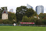 October 06, 2019, Paris (France) - Starting Gate for the Prix de l'Ar de Triomphe (La Defense in the background) on October 6 in ParisLongchamp. [Copyright (c) Sandra Scherning/Eclipse Sportswire)]
