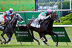 ELMONT, NY - JUNE 11: Flintshire, ridden by Javier Castellano, wins the Woodford Reserve Manhattan Stakes on Belmont Stakes Day before the 148th Belmont Stakes on June 11, 2016 in Elmont, New York. (Photo by Dan Heary/Eclipse Sportswire/Getty Images)