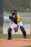 North Dakota State Bison catcher Jack Simonsen (29) during warmups before a game against the Central Connecticut State Blue Devils on February 23, 2018 at North Charlotte Regional Park in Port Charlotte, Florida.  North Dakota State defeated Connecticut State 2-0.  (Mike Janes/Four Seam Images)