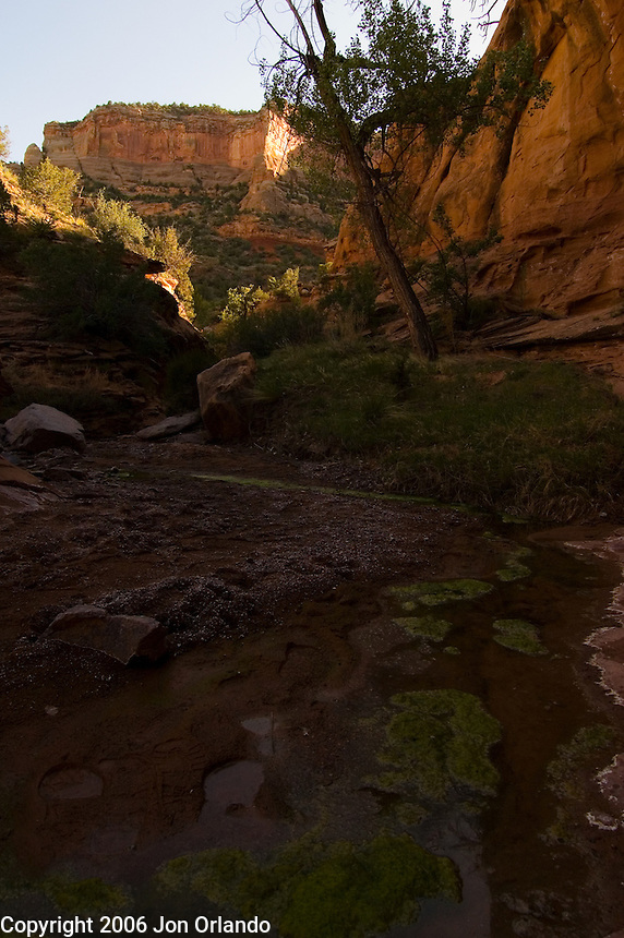 View from a side canyon of Horsethief Canyon on the Colorado River in western Colorado.