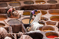 Fes, Morocco.  Working in the Leather-Dying Pits, the Chouwara Tanneries.