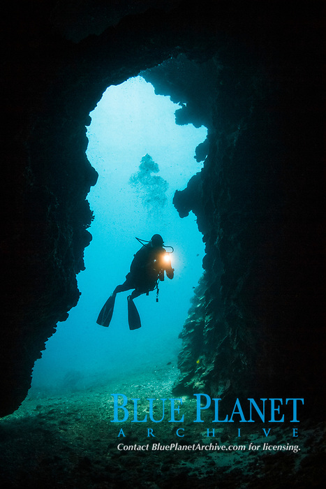 scuba diver exploring First Cathedral, Lanai, Hawaii, USA, Pacific Ocean, MR