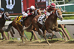 August 29 2015: Sheer Drama with Joe Bravo win the $750,000 Grade I Personal Ensign Stakes for fillies & mares, 3-year olds & up going 1 1/8 at Saratoga Racetrack.  Trainer David Fawkes. Owner Harold L. Queen. Sue Kawczynski/ESW/CSM