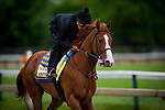 BALTIMORE, MD - MAY 17:  Justify with Humberto Gomez gallops in preparation for the Preakness Stakes at Pimlico Racecourse on May 17, 2018 in Baltimore, Maryland. (Photo by Alex Evers/Eclipse Sportswire/Getty Images)