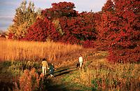 Rural landscape of a family walking amongst fall foliage.